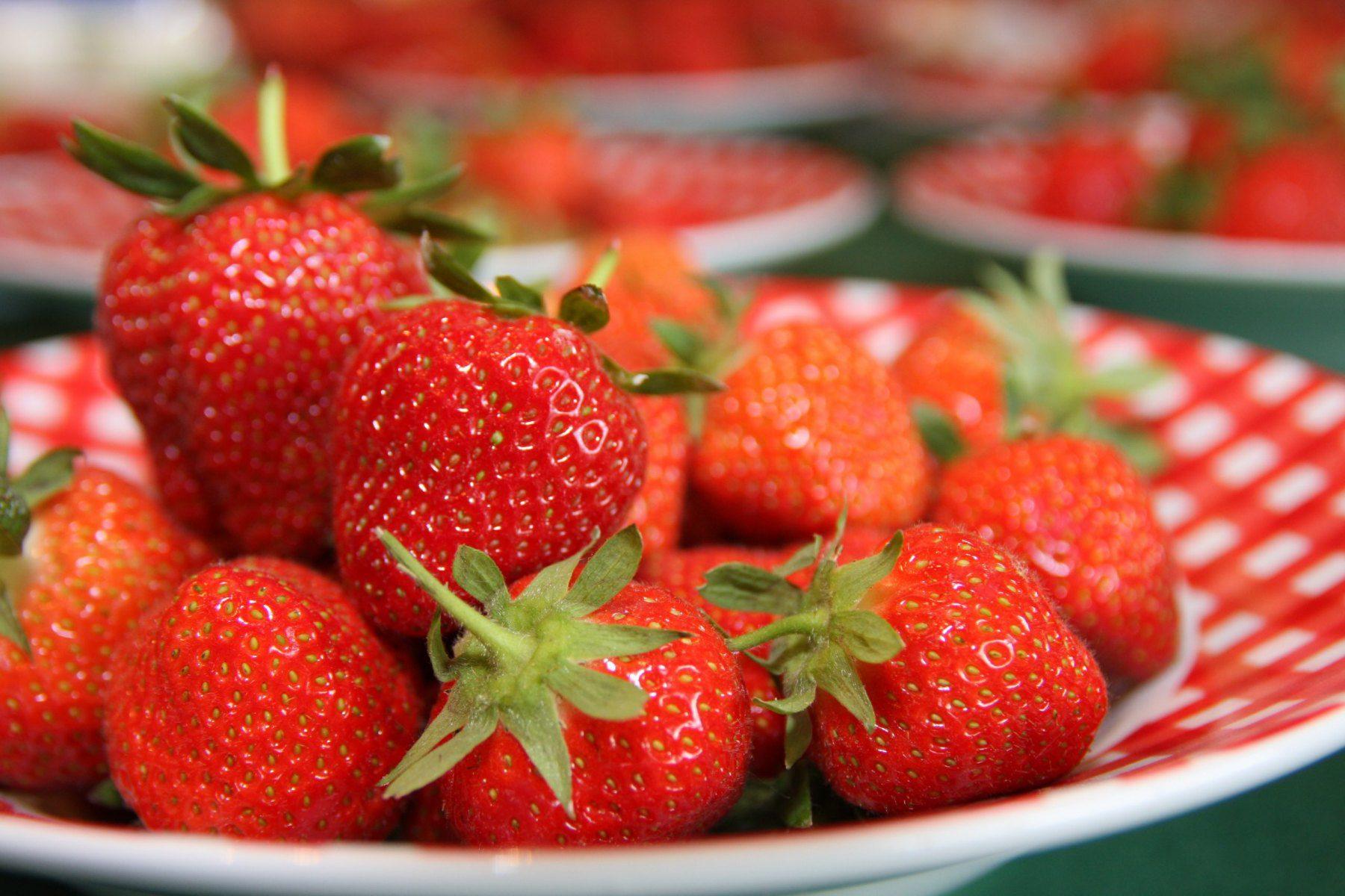 erdbeeren-scaled